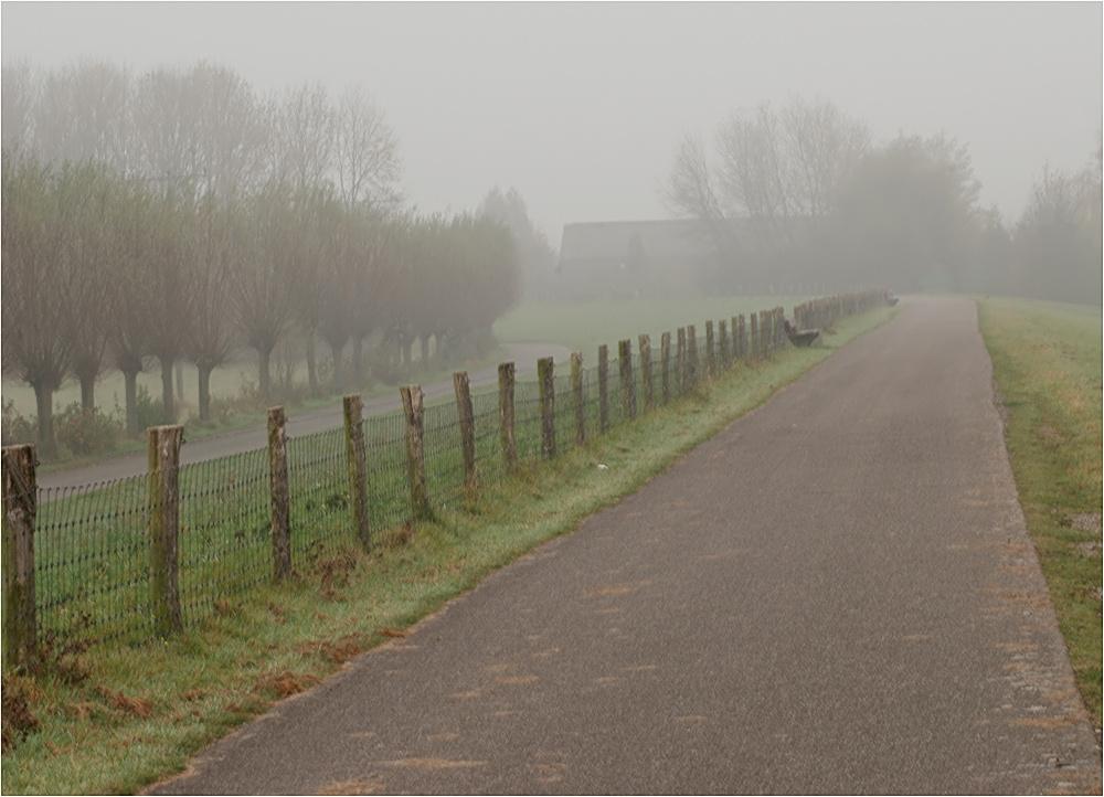 November am Niederrhein...