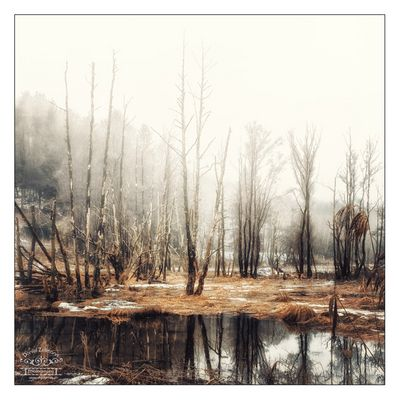 November-Blues IV