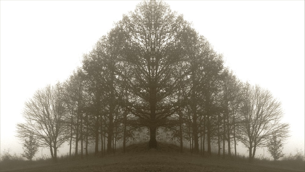 november & nebel ...