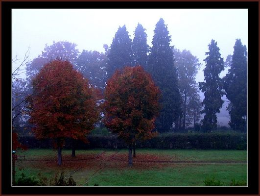 Novemberabend