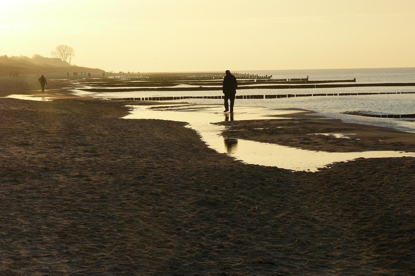 Novembermorgen an der Ostsee