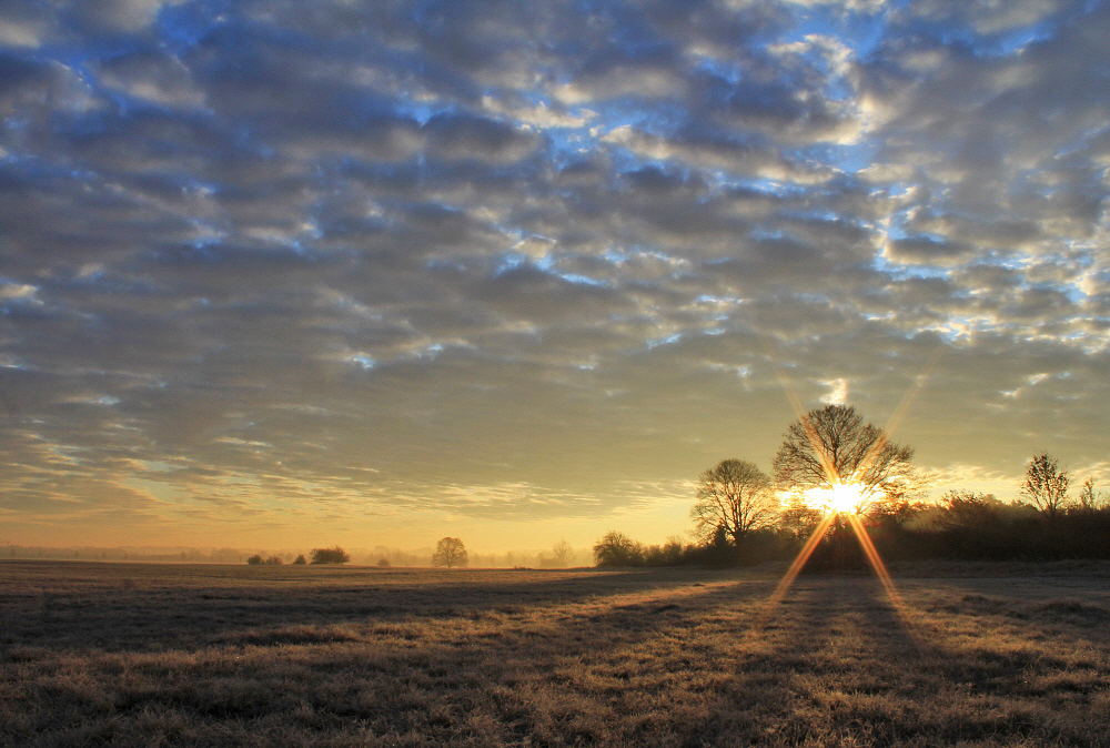 Novembermorgen (II)