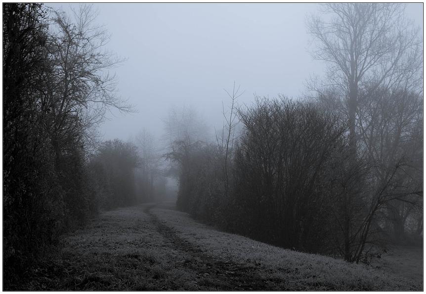 - Novembermorje -