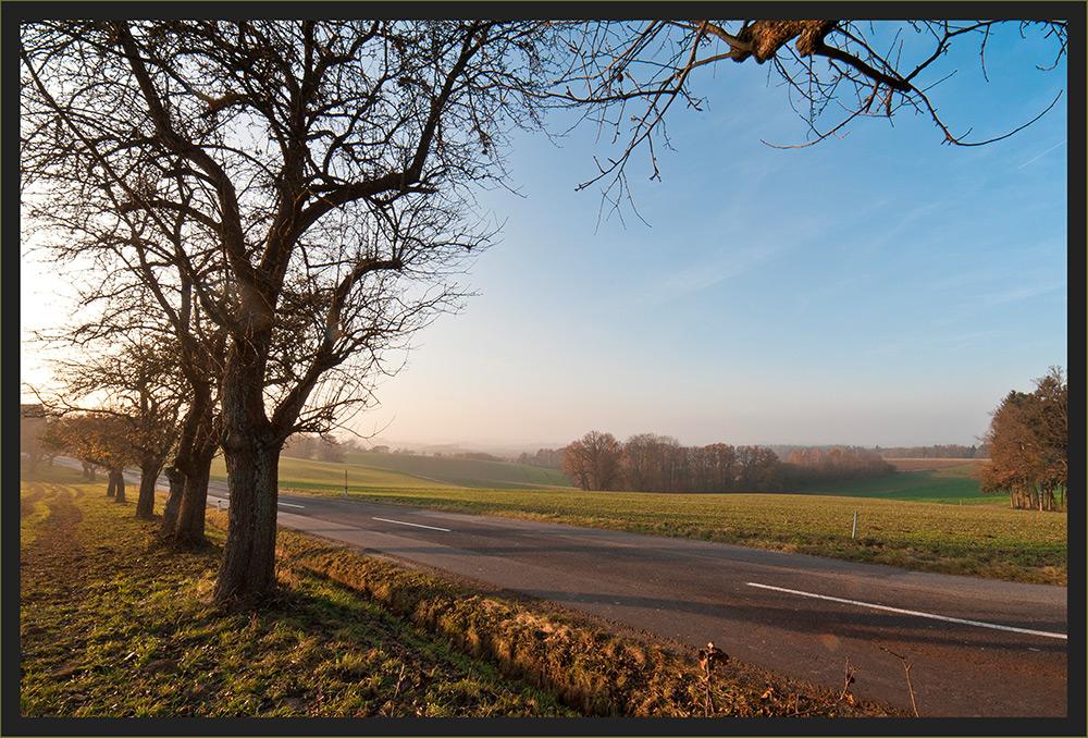 Novembersonne