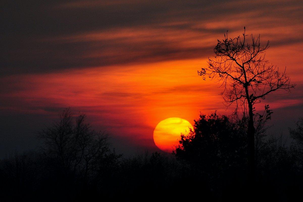 Novembersonnenuntergang