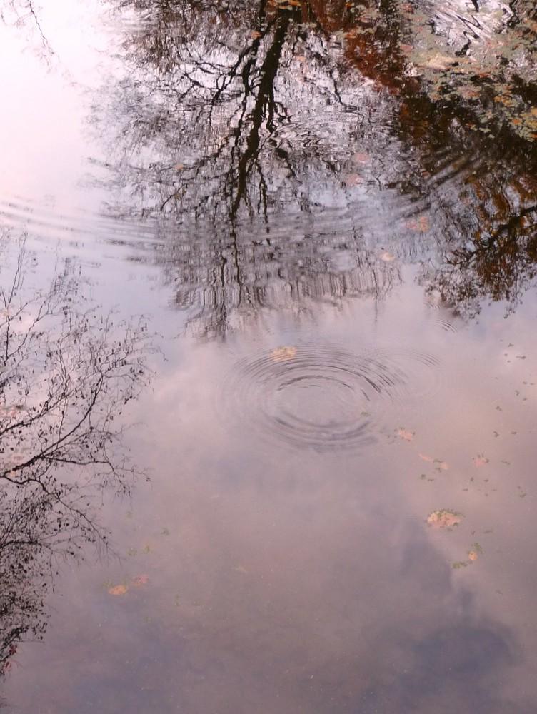 Novemberwasser