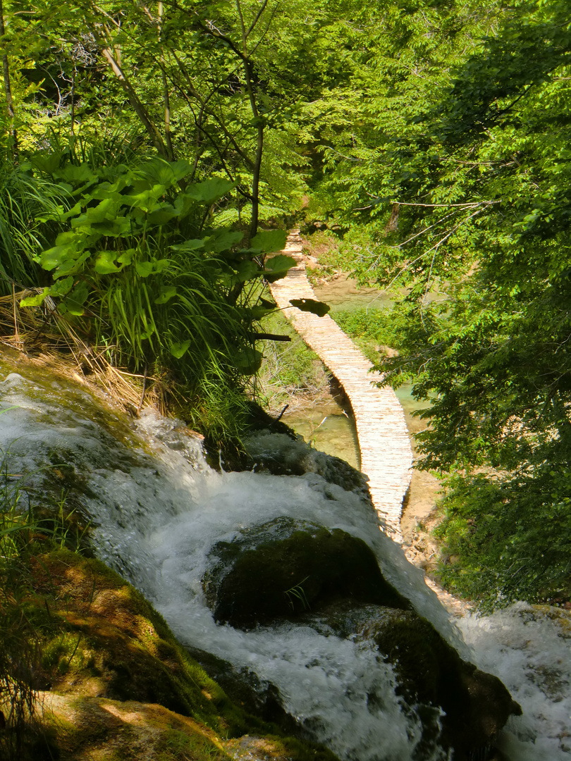 NP Plitvice Lakes : SASTAVCI Last Waterfalls from over 90 and the begin of the KORANA River