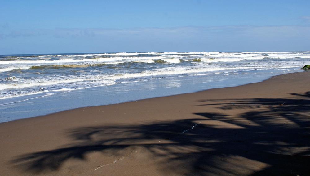 NP Totuguero Karibisches Meer CR