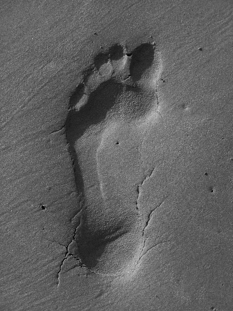 Nu pied