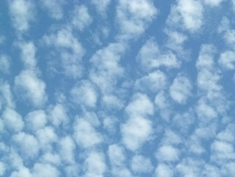 nubes borregadas