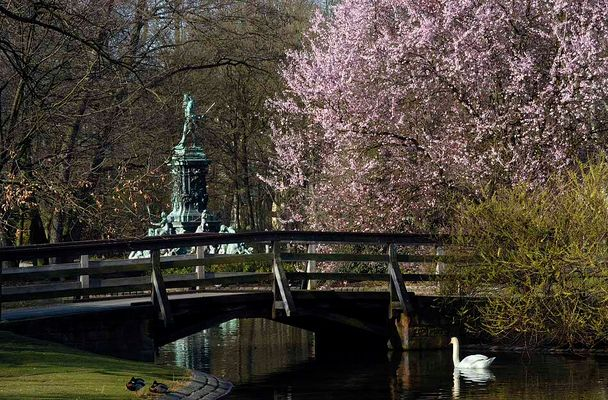 Nürnberger Stadtparkweiher
