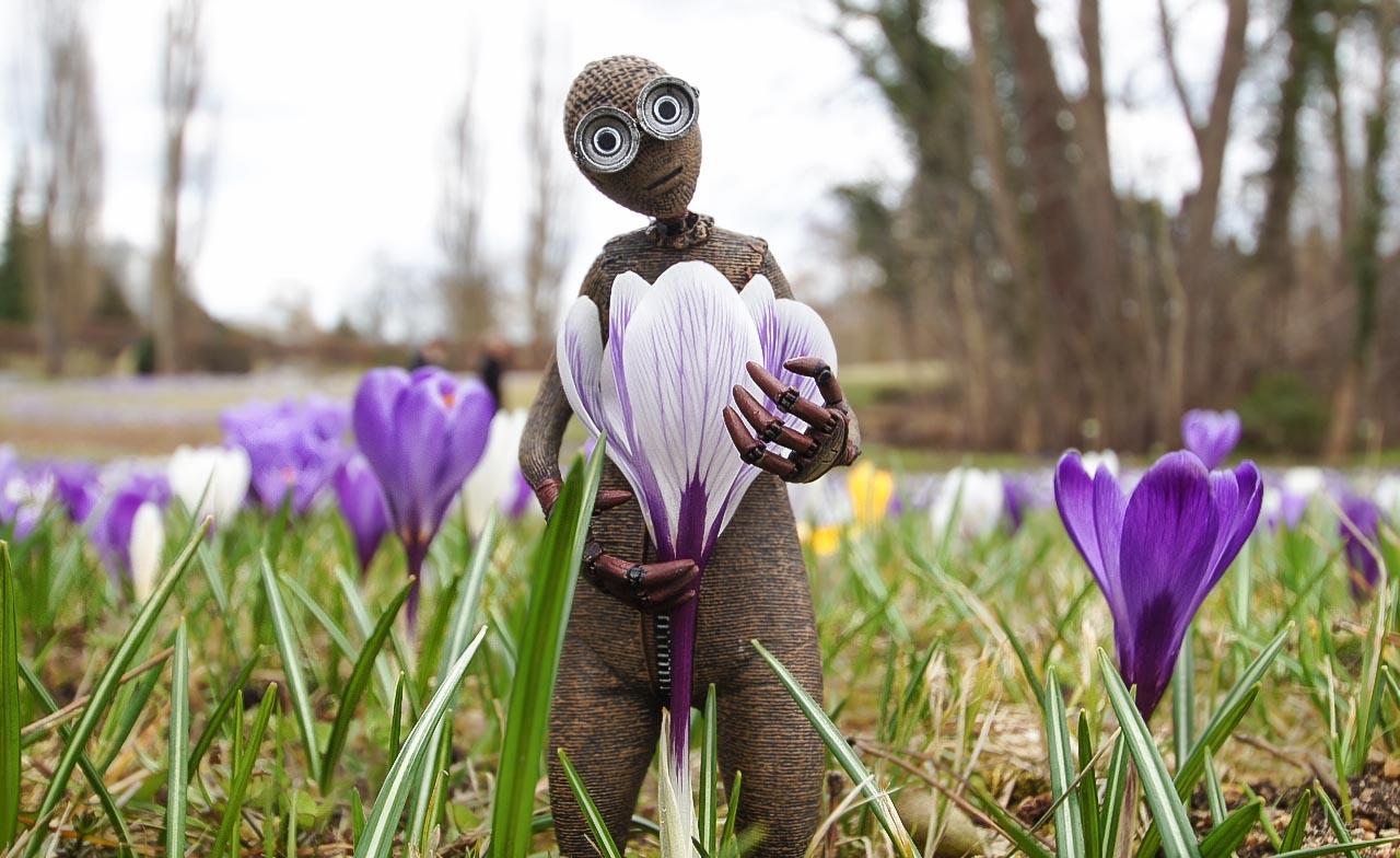Nummer 9 hat den Frühling gefunden ;o)
