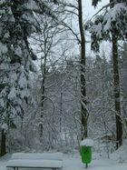 """nur das """"künstliche Grün"""" stört die Schneeidylle..."""