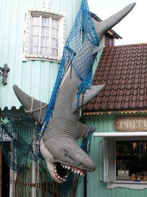 Nur ein toter Hai ist ein guter Hai