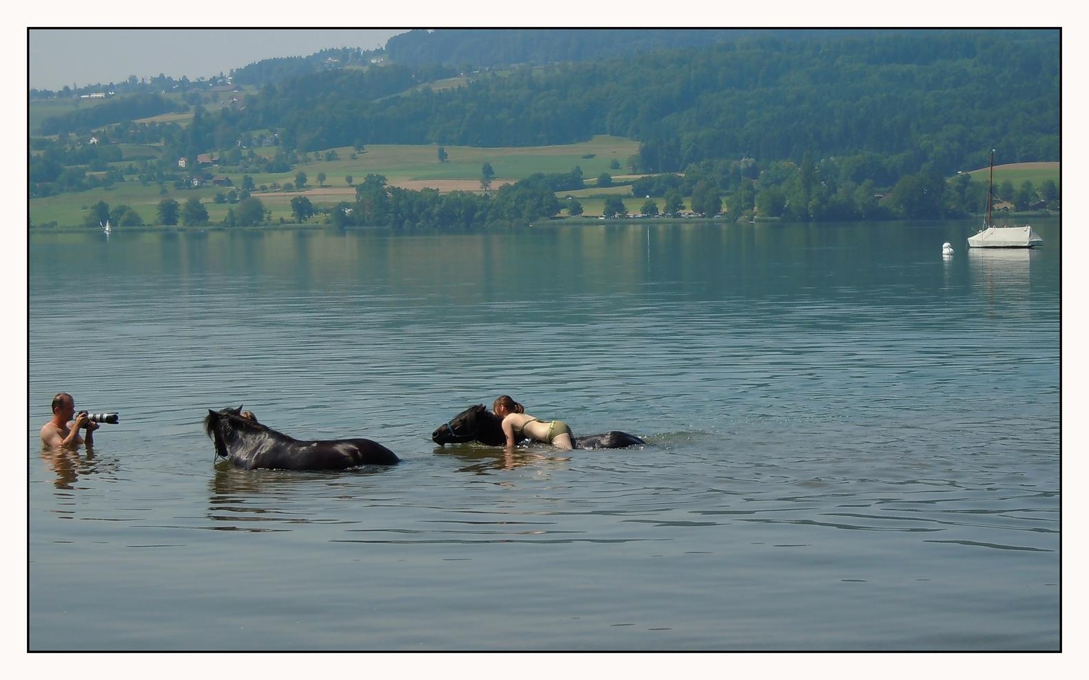 nur entschlossene Fotografen kriegen echte Seepferdchen vor die Linse
