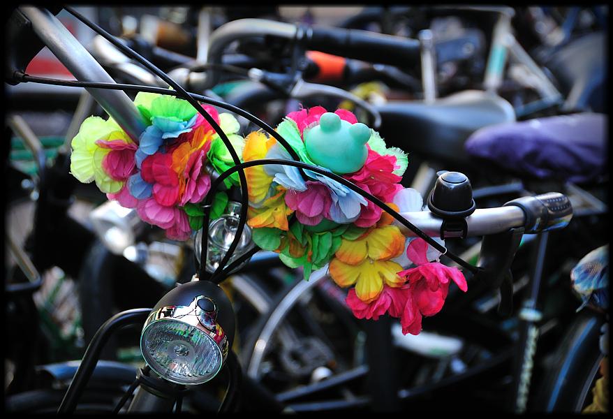 nur Genießer fahren Fahrrad...