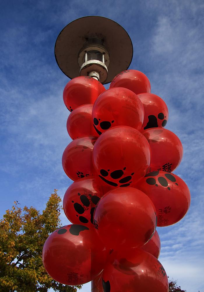 ... nur Luftballons.