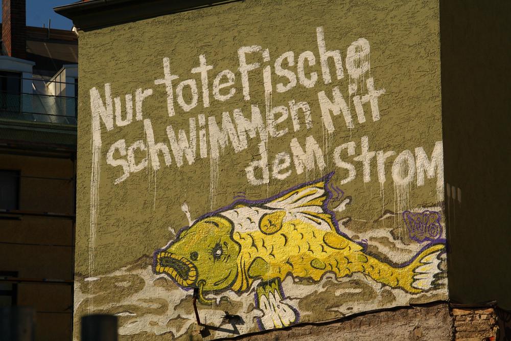 Nur tote Fische schwimmen mit dem Strom