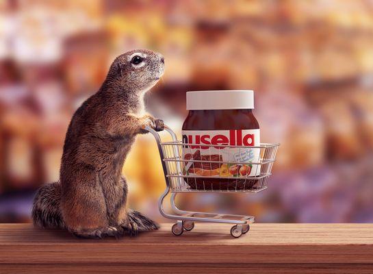 Nusela - Tierisch gut!