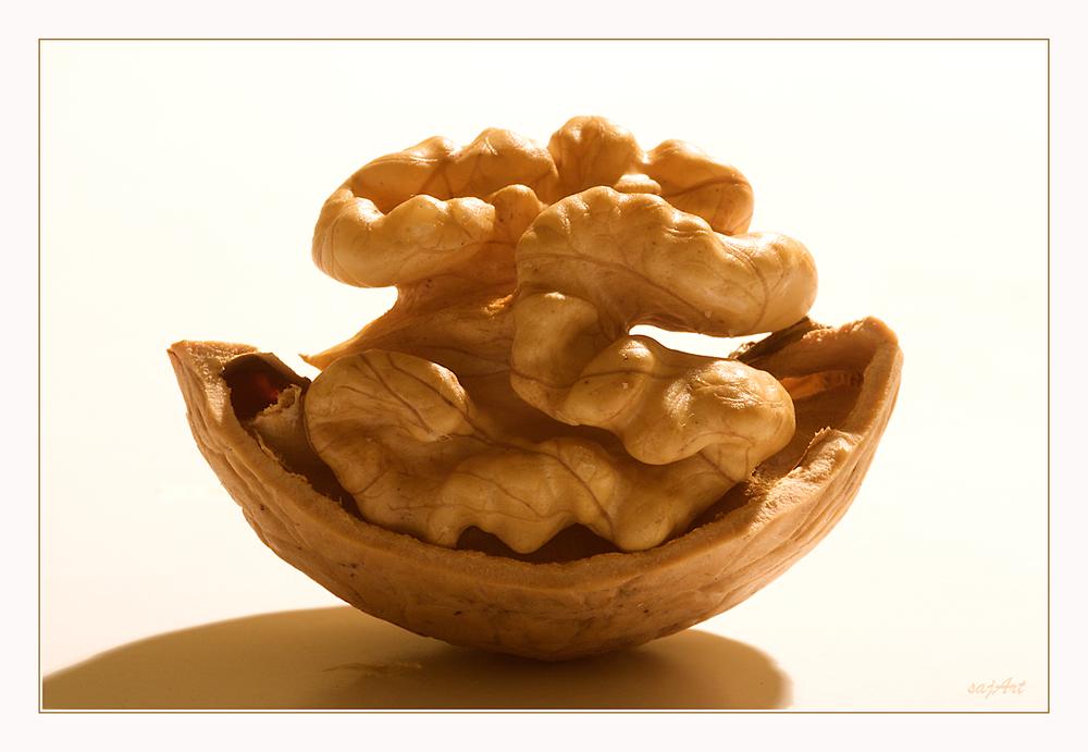 nuss bonsai foto bild stillleben tabletop table top bilder auf fotocommunity. Black Bedroom Furniture Sets. Home Design Ideas