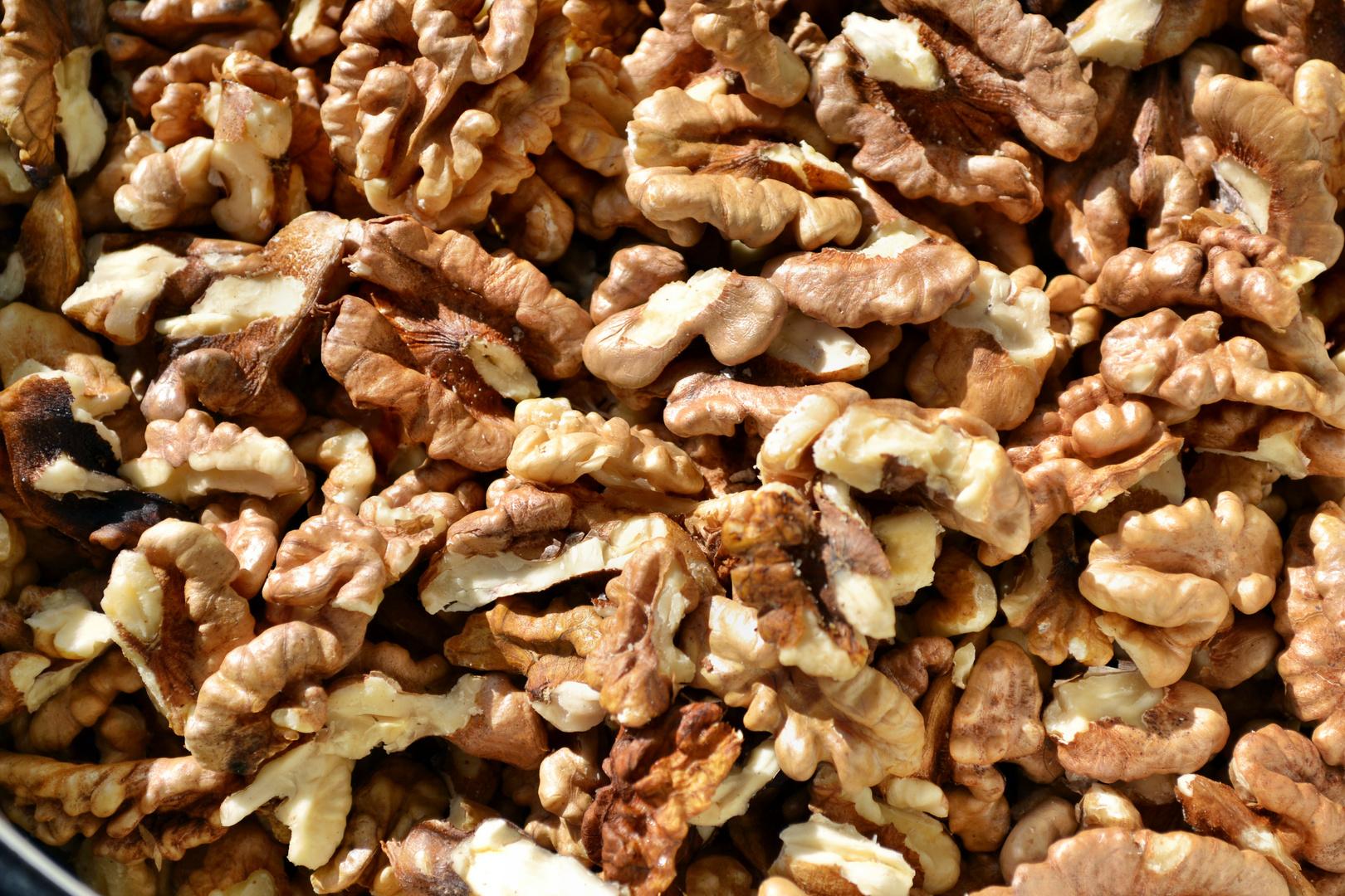 nut kernel