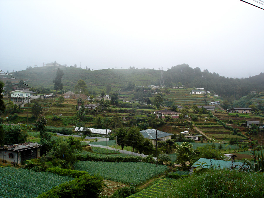 Nuwara Eliya, good-bye