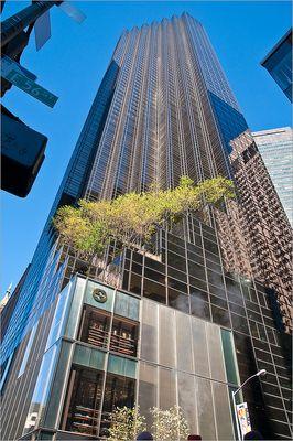 N.Y. [83] - Trump Tower