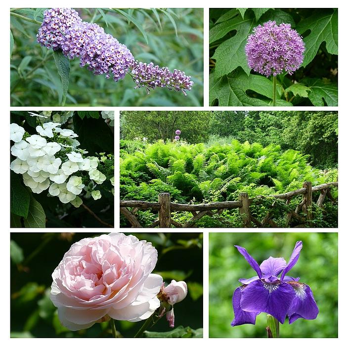 ...NY - Flowers...