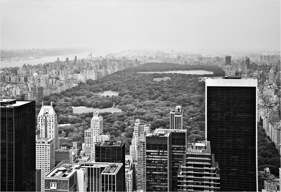 NYC #29