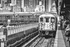 NYC B & W 207