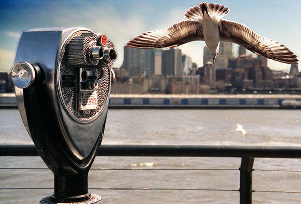 NYC ~ blick vom pier 17 ~