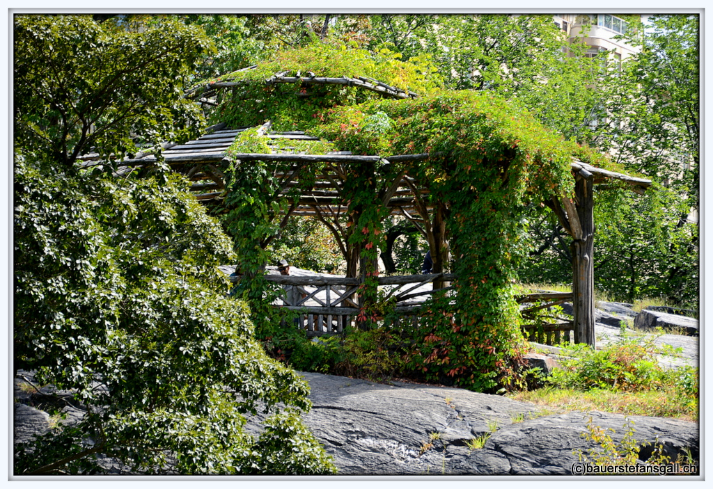 """NYC Central Park Natural""""House."""""""