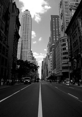 NYC-Jungle