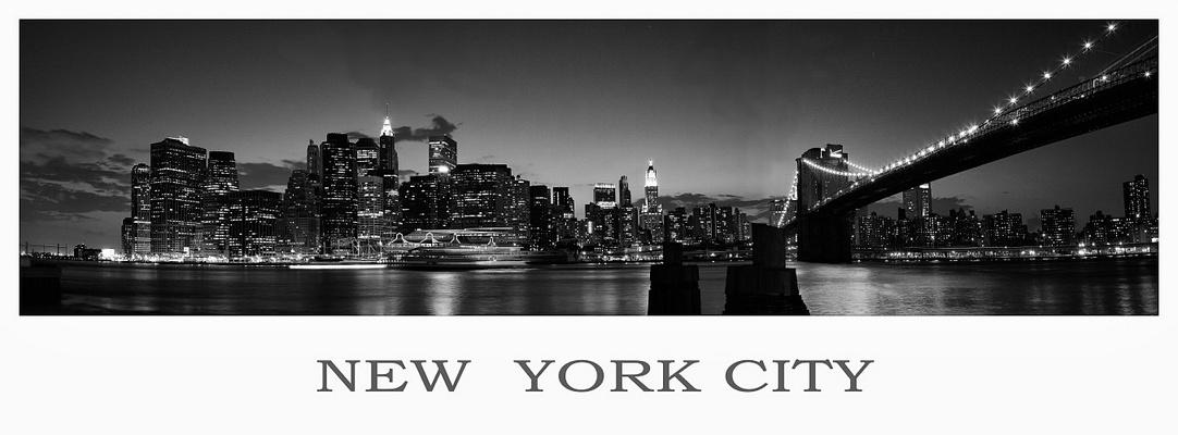 N.Y.C. Panorama