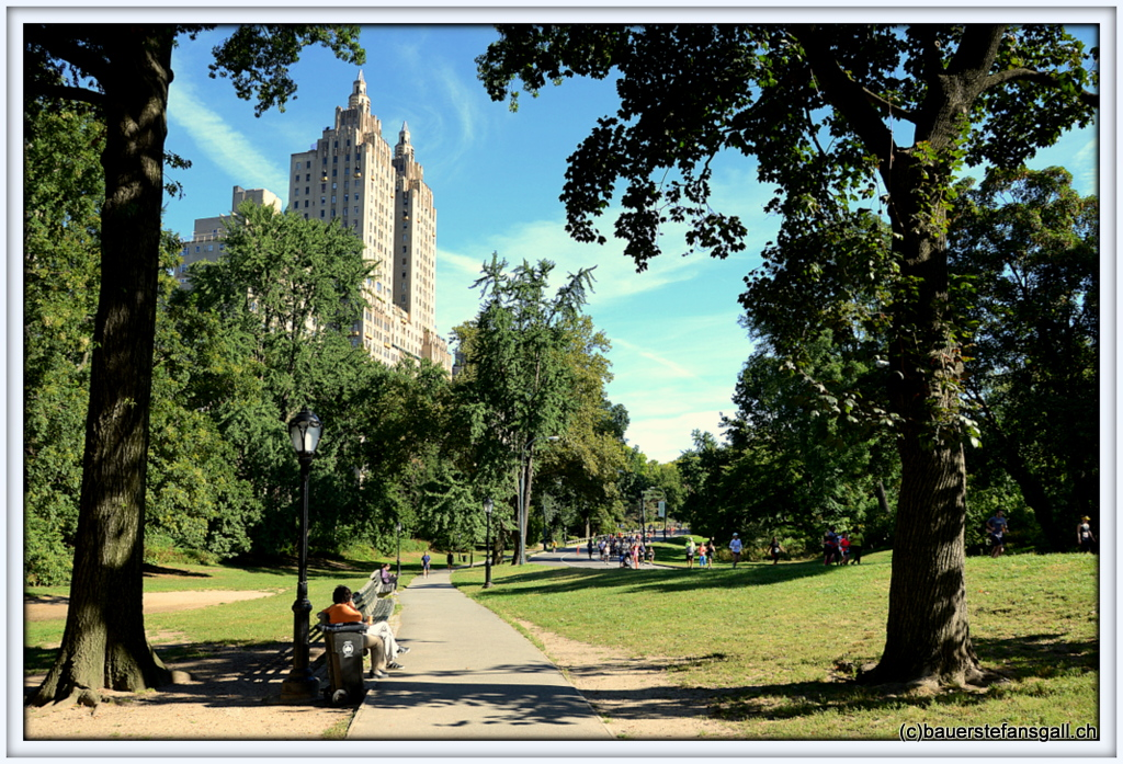 NYC Typical Central Park