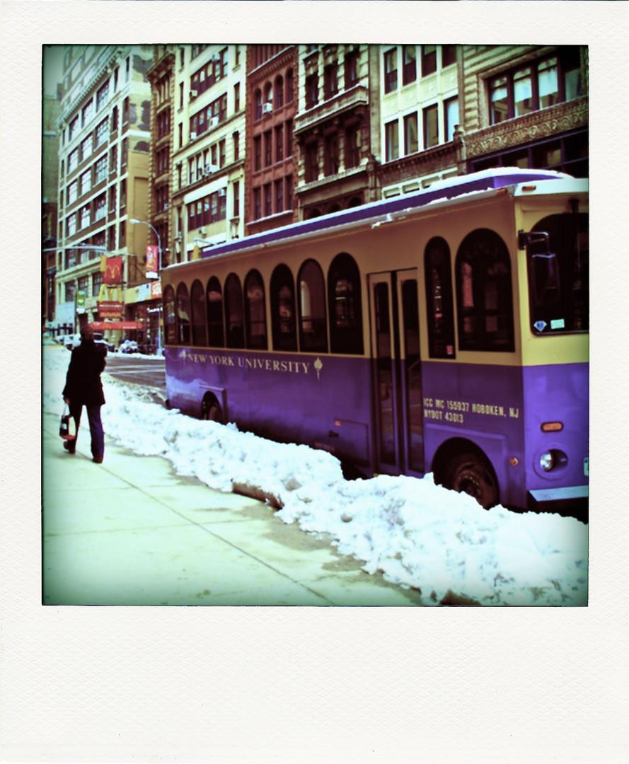 N.Y.Pola2