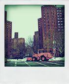 N.Y.Pola4