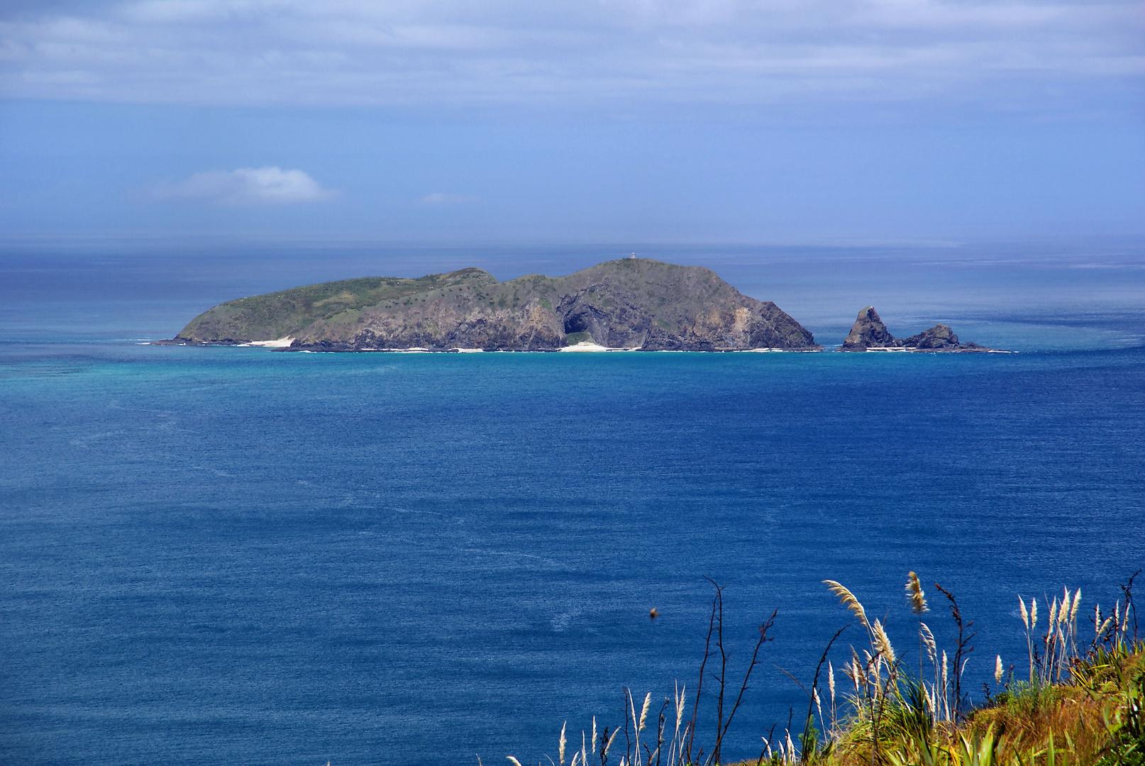 NZ Insel beim Cape Maria van Diemen