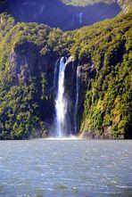 NZ Milford Sound.  Einer von vielen...