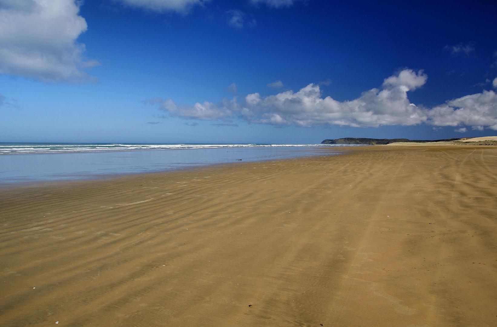 NZ Ninety Mile Beach
