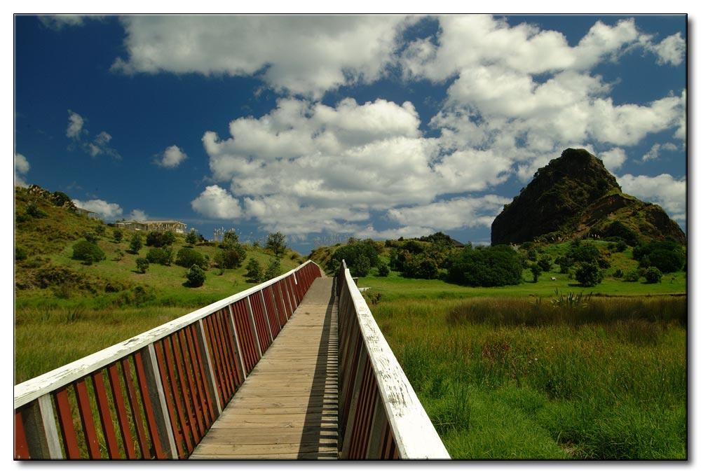 NZ's Wege durch die Natur
