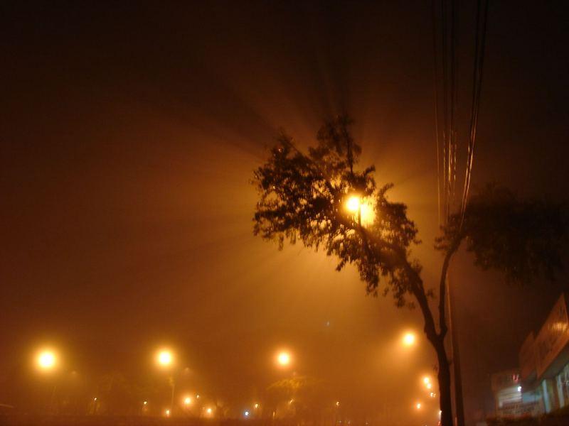 O nevoeiro .