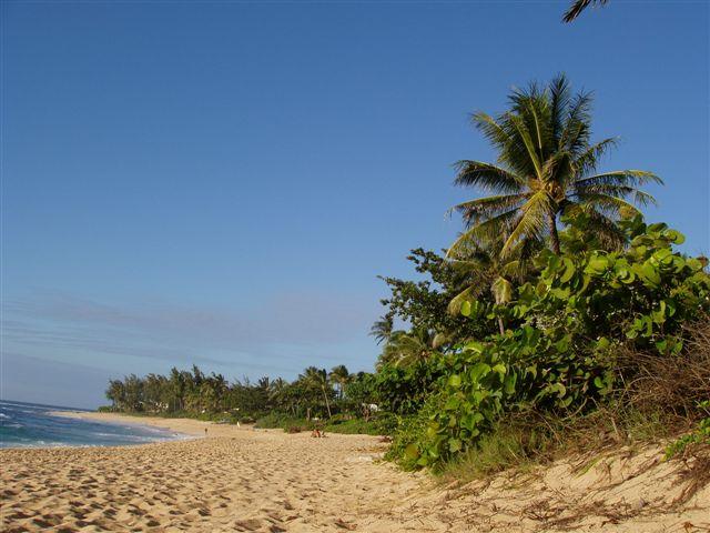 Oahu Hawaii - Sunset Beach