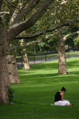Oase der Ruhe (Central Park - Sheep Meadow)