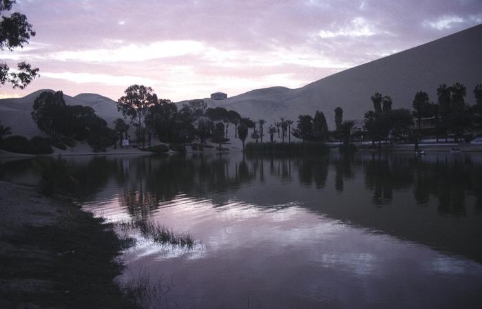 Oasenlandschaft in Peru bei Abendlicht