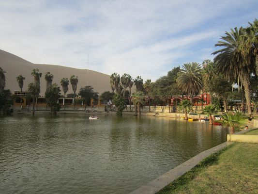 Oasis de Huacachina Ica-Perú