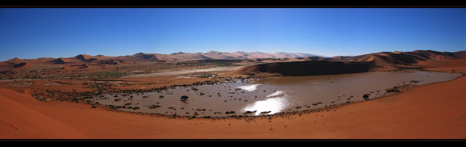 OASIS - Panorama