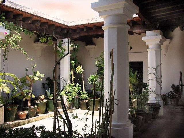 Oaxaca Hof