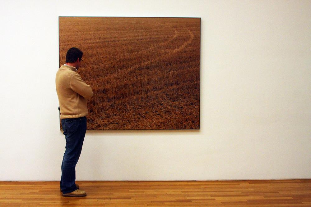 ob das Bild auch in die Galerie gewählt worden wäre ?