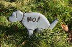 Ob die Hunde das wohl lesen und verstehen können???